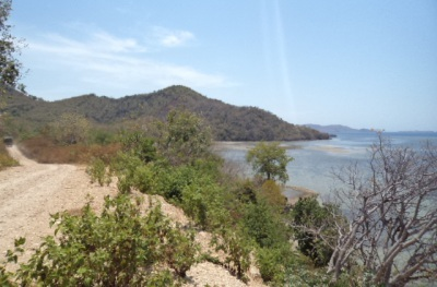 Beachfront land for sale in Flores
