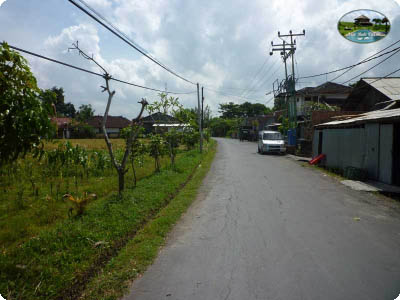 photo: 40-are land for lease in Kerobokan, Bali