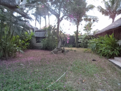 photo: 13-are land for lease in Seminyak, Bali