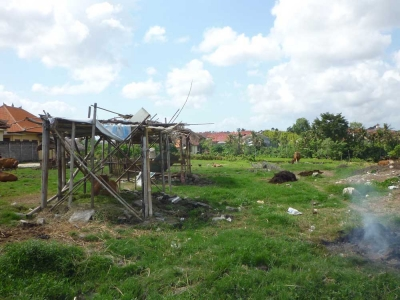 photo: 20-are land for lease in Umalas, Bali