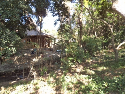 photo: 25-are land for lease in Umalas, Bali