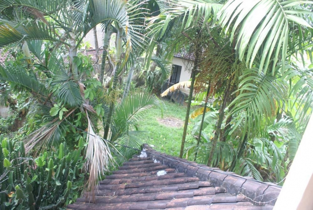 photo: 10-are land for lease in Umalas, Bali