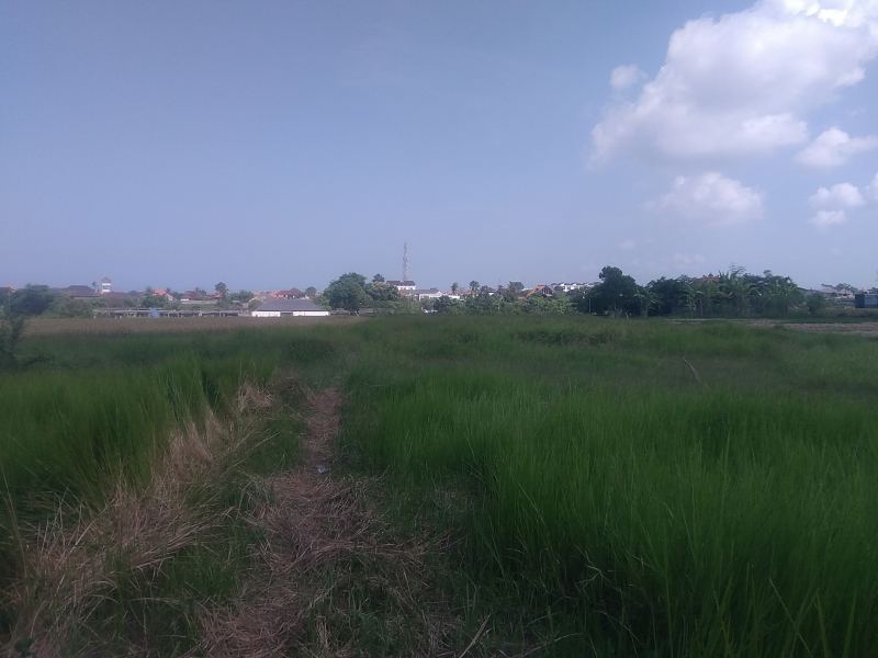 photo: 16-are land for lease in Umalas, Bali