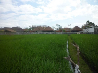 photo: 106-are freehold land for sale in Berawa, Bali