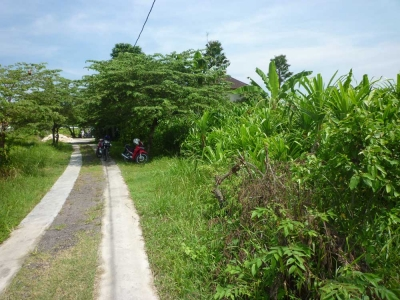 photo: 17-are freehold land for sale in Canggu, Bali