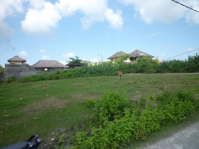 photo: 5-are freehold land for sale in Canggu, Bali