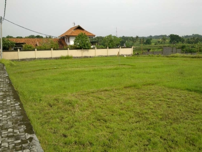 photo: 11-are freehold land for sale in Canggu, Bali