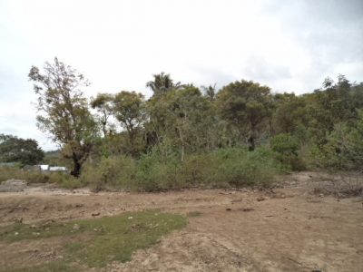 photo: 150-are freehold land for sale in Rangko, Flores