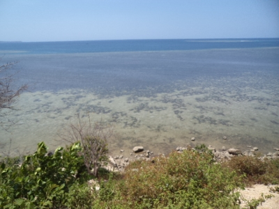 photo: 200-are freehold land for sale in Rangko, Flores