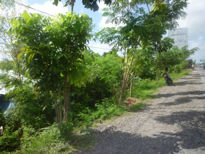 photo: 15-are freehold land for sale in Seminyak, Bali