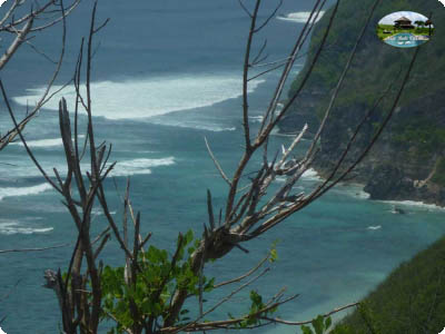 photo: 180-are freehold land for sale in Uluwatu, Bali