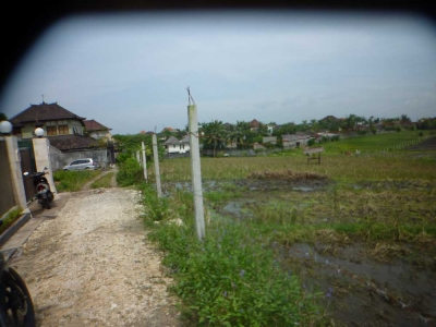 photo: 40-are freehold land for sale in Umalas, Bali