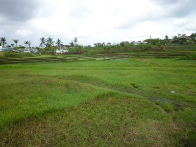 photo: 28-are freehold land for sale in Umalas, Bali