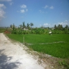 land for lease Berawa Bali