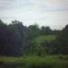 land for lease Canggu Bali