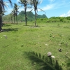 freehold land for sale Pantai Meang Lombok