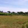 freehold land for sale Sanur Bali