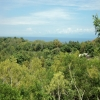 freehold land for sale Uluwatu Bali