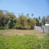 freehold land for sale Umalas Bali