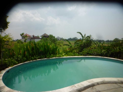 photo: Villa made for rent (lease) in Canggu, Bali