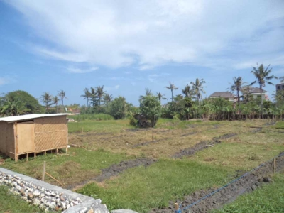 photo: 35-are land for lease in Berawa, Bali