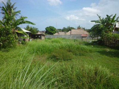 photo: 8-are land for lease in Kerobokan, Bali
