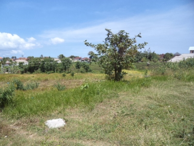 photo: 16-are land for lease in Kerobokan, Bali