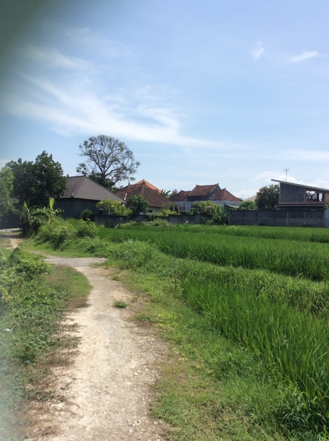 photo: 10-are land for lease in Kerobokan, Bali