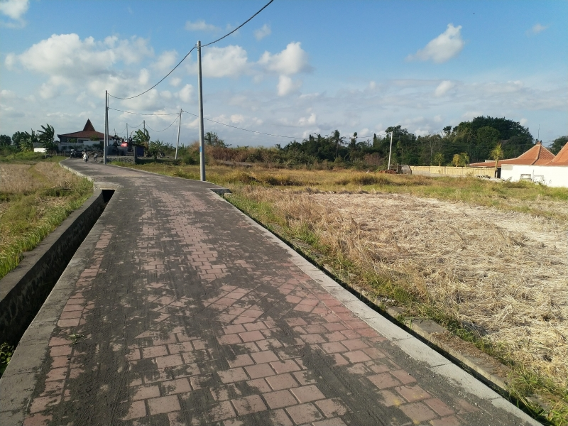 photo: 28-are land for lease in Pererenan, Bali