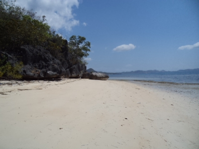 photo: 1300-are land for lease in Rangko, Flores