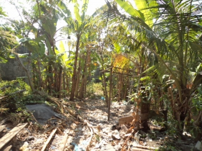 photo: 2-are land for lease in Seminyak, Bali