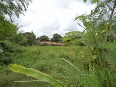 photo: 11-are land for lease in Umalas, Bali