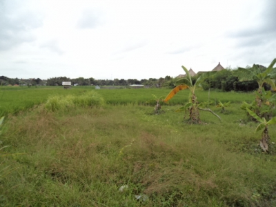 photo: 8-are land for lease in Umalas, Bali