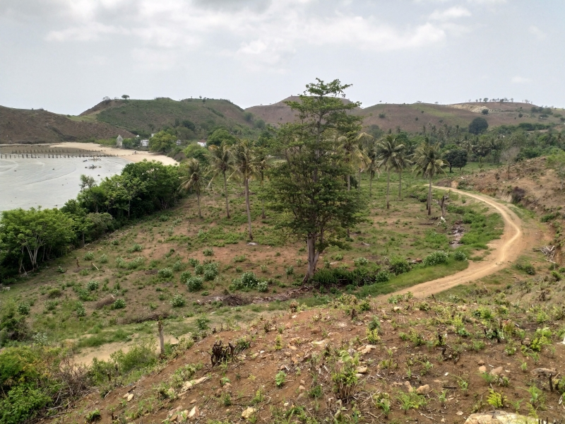 photo: 200-are freehold land for sale in Awang Bay, Lombok