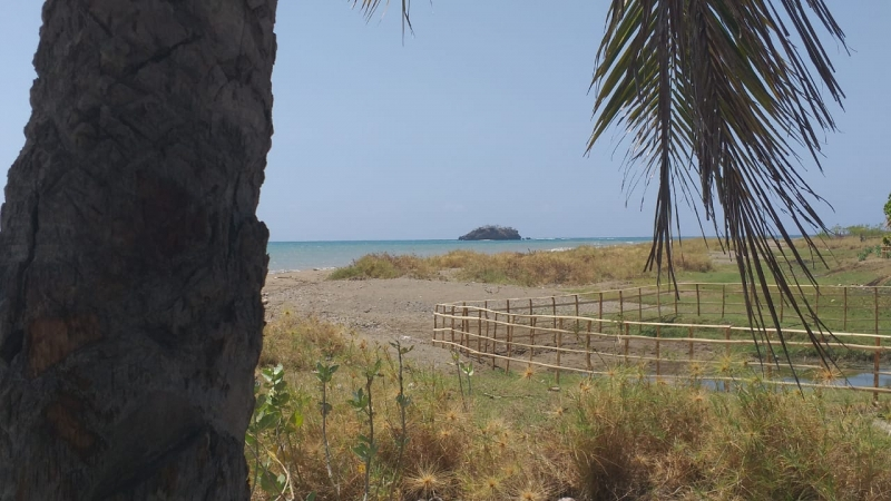 photo: 100-are freehold land for sale in Bajawa, Flores