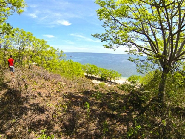 photo: 160-are freehold land for sale in Bima, Sumbawa