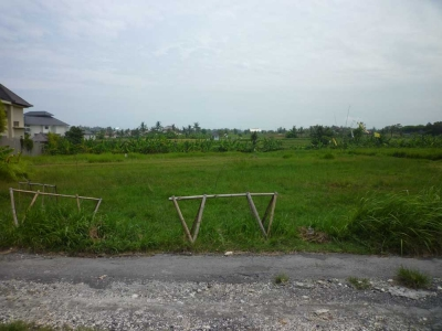 photo: 22-are freehold land for sale in Canggu, Bali