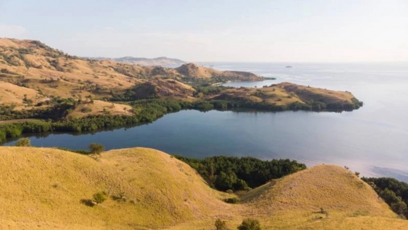 photo: 567.8-are freehold land for sale in Labuan Bajo, Flores