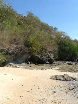 photo: 130-are freehold land for sale in Labuan Bajo, Flores