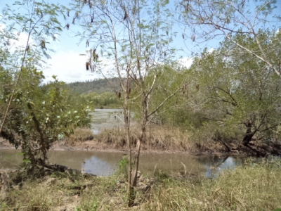 photo: 54-are freehold land for sale in Labuan Bajo, Flores