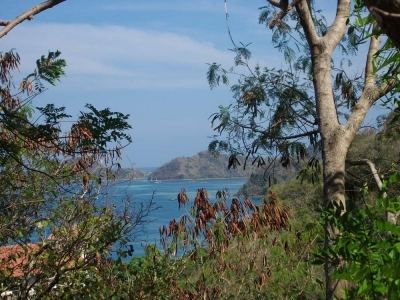 photo: 8-are freehold land for sale in Labuan Bajo, Flores