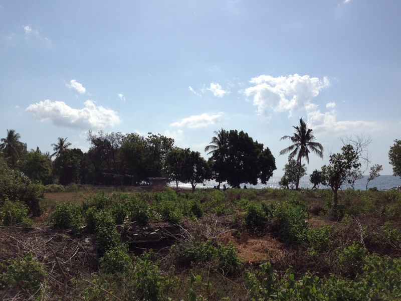 photo: 53-are freehold land for sale in Lovina, Bali
