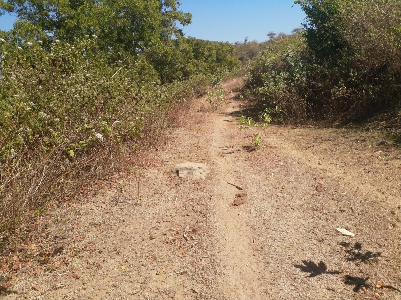 photo: 9600-are freehold land for sale in Mawi Beach, Lombok