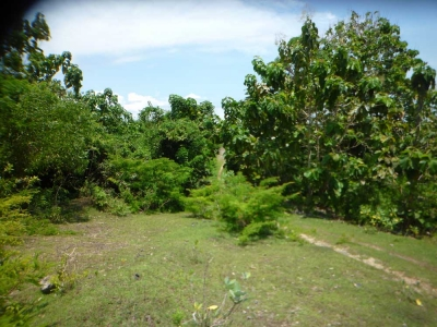 photo: 300-are freehold land for sale in Nusa Dua, Bali