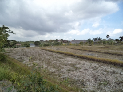 photo: 50-are freehold land for sale in Nusa Dua, Bali