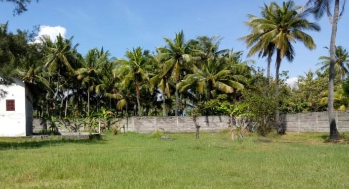 photo: 254-are freehold land for sale in Padang Padang, Bali