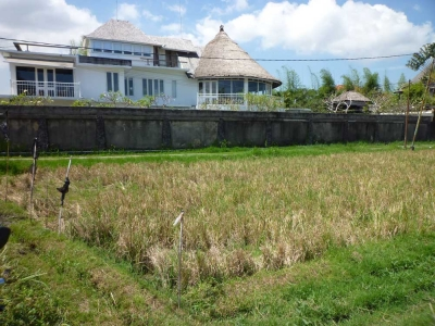 photo: 29-are freehold land for sale in Petitenget, Bali