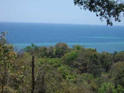photo: 35-are freehold land for sale in Rangko, Flores
