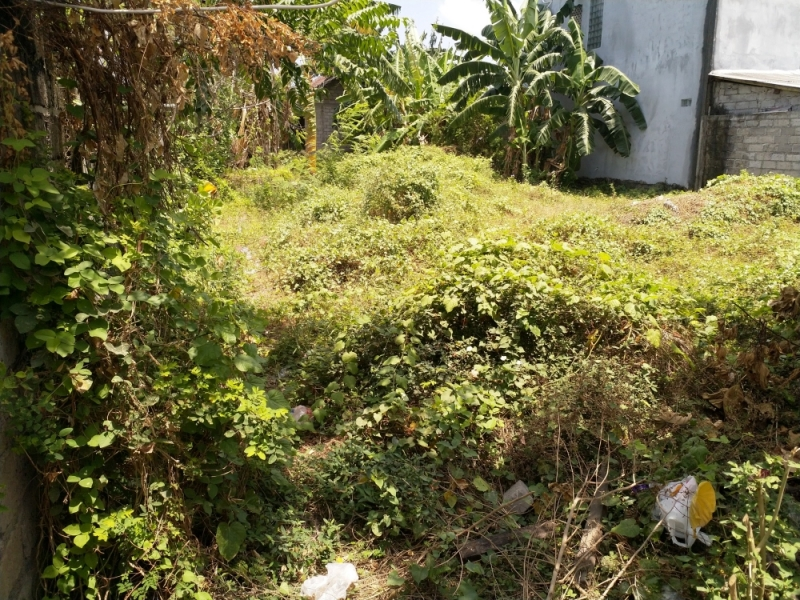 photo: 3-are freehold land for sale in Seminyak, Bali