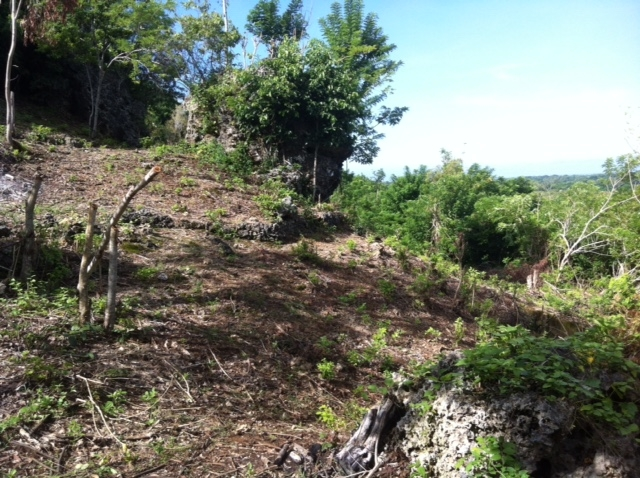 photo: 30-are freehold land for sale in Uluwatu, Bali